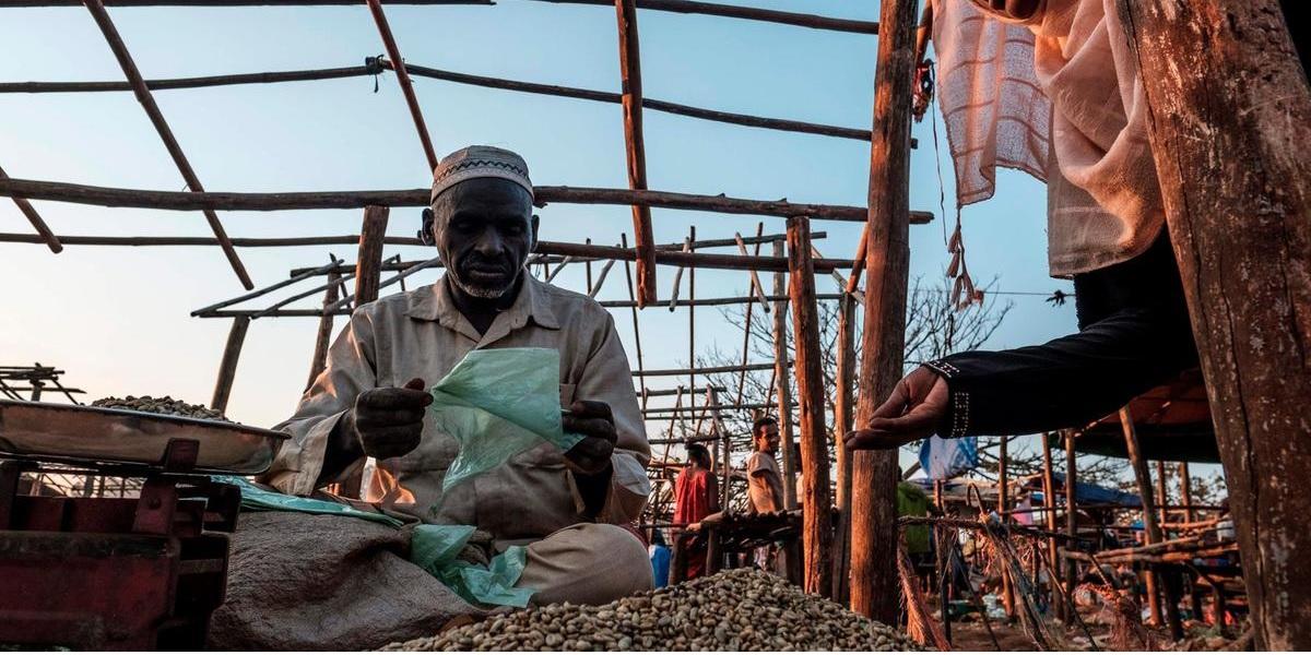 Ethiopian-coffee-supply-chain.jpg